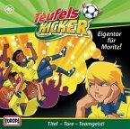 Eigentor für Moritz / Teufelskicker Hörspiel Bd.46 (1 Audio-CD)