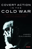 Covert Action in the Cold War (eBook, PDF)