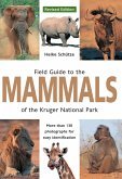 Field Guide to Mammals of the Kruger National Park (eBook, ePUB)