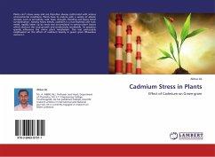Cadmium Stress in Plants