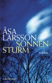 Sonnensturm (eBook, ePUB)