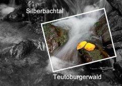 Silberbachtal Teutoburgerwald (Tischaufsteller DIN A5 quer)
