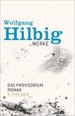 Das Provisorium / Wolfgang Hilbig Werke Bd.6 (eBook, ePUB)