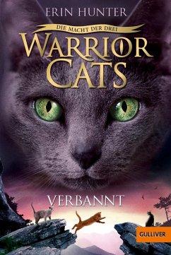 Verbannt / Warrior Cats Staffel 3 Bd.3