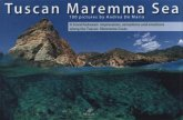 Tuscan Maremma sea (engl.)