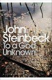 To a God Unknown (eBook, ePUB)