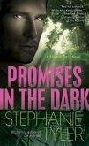 Promises in the Dark (eBook, ePUB)