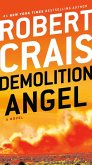 Demolition Angel (eBook, ePUB)