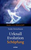 Urknall, Evolution - Schöpfung (eBook, ePUB)