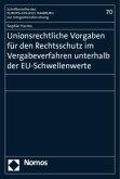 Unionsrechtliche Vorgaben für den Rechtsschutz im Vergabeverfahren unterhalb der EU-Schwellenwerte