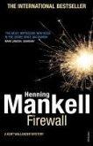 Firewall (eBook, ePUB)