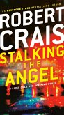 Stalking the Angel (eBook, ePUB)