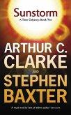 Sunstorm (eBook, ePUB)