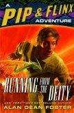 Running from the Deity (eBook, ePUB)
