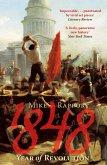 1848: Year Of Revolution (eBook, ePUB)