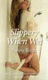 Slippery When Wet (eBook, ePUB)