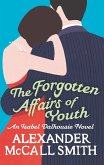 The Forgotten Affairs Of Youth (eBook, ePUB)
