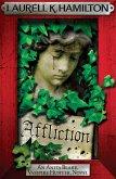 Affliction (eBook, ePUB)