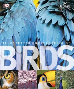 The Illustrated Encyclopedia of Birds (eBook, PDF)