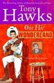 One Hit Wonderland (eBook, ePUB)