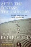 After The Ecstasy, The Laundry (eBook, ePUB)
