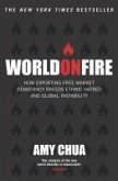 World On Fire (eBook, ePUB)