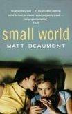 Small World (eBook, ePUB)