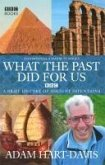 What the past did for us (eBook, ePUB)