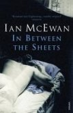 In Between the Sheets (eBook, ePUB)