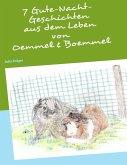 7 Gutenacht-Geschichten aus dem Leben von Oemmel & Boemmel (eBook, ePUB)