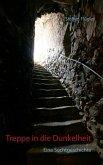 Treppe in die Dunkelheit (eBook, ePUB)