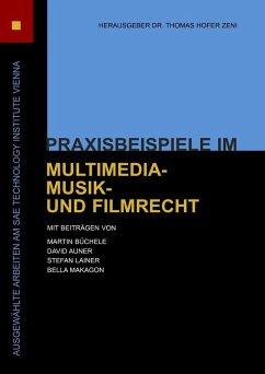 Praxisbeispiele im Multimedia-, Musik- und Filmrecht (eBook, ePUB)