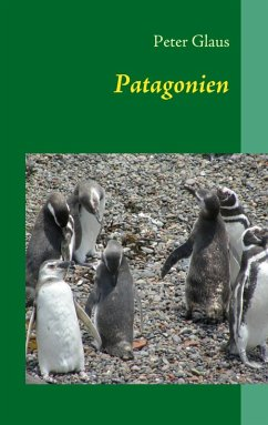 Patagonien (eBook, ePUB)