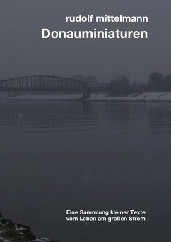 Donauminiaturen (eBook, ePUB)