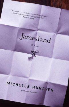 Jamesland (eBook, ePUB) - Huneven, Michelle