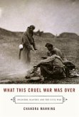 What This Cruel War Was Over (eBook, ePUB)