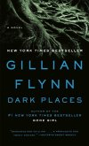 Dark Places (eBook, ePUB)