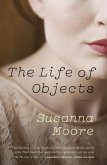 The Life of Objects (eBook, ePUB)