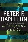 Misspent Youth (eBook, ePUB)