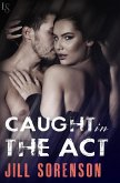 Caught in the Act (eBook, ePUB)