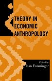 Theory in Economic Anthropology (eBook, ePUB)
