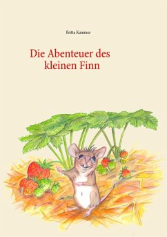 Die Abenteuer des kleinen Finn (eBook, ePUB)