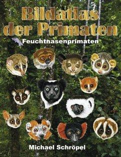 Bildatlas der Primaten (eBook, ePUB)