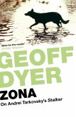 Zona (eBook, ePUB)