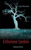 Erfrorene Seelen (eBook, ePUB)