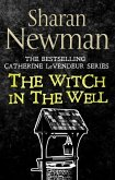 The Witch in the Well (eBook, ePUB)