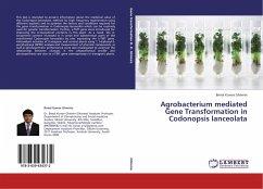 Agrobacterium mediated Gene Transformation in Codonopsis lanceolata