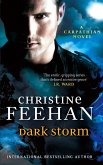 Dark Storm (eBook, ePUB)