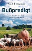 Bußpredigt / Baltasar Senner Bd.3 (eBook, ePUB)