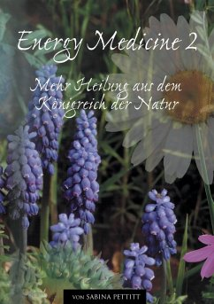 Energy Medicine 2 (eBook, ePUB)